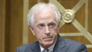 "The needling and the damage done: Corker, with no ""F""s left to give, upends DC"