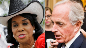 Uncorked: both Rep. Wilson and Sen. Corker have triggered Trump and his minions