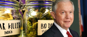 How badly is the Trump-Sessions' 'War on Marijuana' backfiring? This badly…