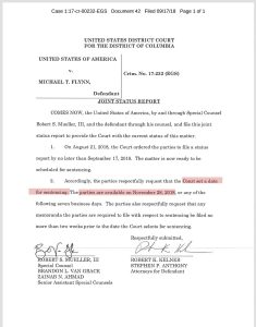 Michael Flynn will be sentenced on or after November 28 [via SpicyFiles] (twitter.com)