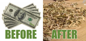 Utah Toddler Runs $1,000 of His Parents' Football Ticket Cash Through Paper Shredder